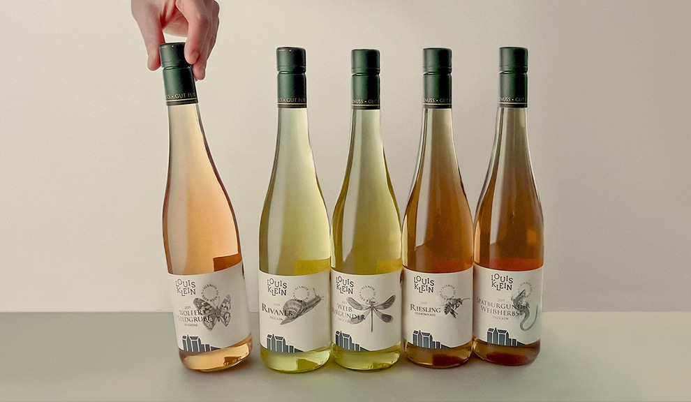 Design Weinflaschen